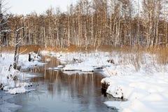 Rivière d'hiver Photos libres de droits