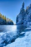 Rivière d'hiver avec la forêt Image libre de droits