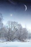 Rivière d'hiver la nuit paysage de l'Europe de l'Est Photo libre de droits