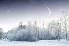 Rivière d'hiver la nuit paysage de l'Europe de l'Est Images libres de droits