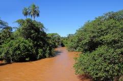 Rivière d'Iguazu. Photographie stock libre de droits