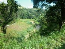Rivière d'umaoya de ville de Welimada image stock