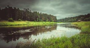 Rivière dans la forêt après pluie photo stock