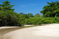 Rivière dans la plage photos libres de droits