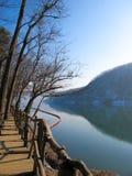 Rivière dans la scène d'hiver Image stock