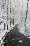 Rivière dans le paysage nordique neigeux d'A image stock
