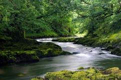 Rivière dans le secteur de lac, Angleterre Images stock