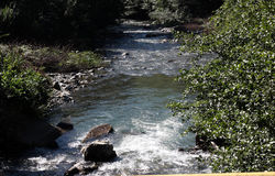 Rivière dans les montagnes Image libre de droits