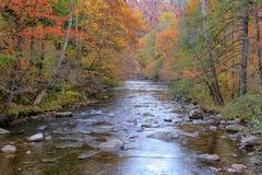 Rivière dans les montagnes fumeuses Image libre de droits