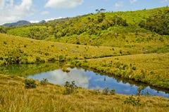 Rivière dans les plaines Photos stock