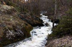 Rivière dans OppegÃ¥rd Norvège Photos stock