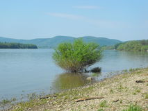 Rivière de bande de Danube Photos stock