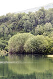Rivière de Benasque Photographie stock libre de droits