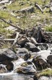 Rivière de Benasque Images stock