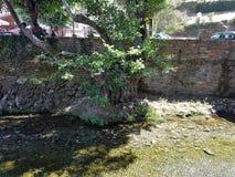 Rivière de Benfeita Photo libre de droits
