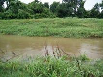 Rivière de Brown Photo libre de droits
