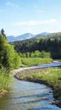 Rivière de Bystrytsya Photo libre de droits