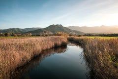 Rivière de calme passant entre les précipitations chez Lozari en Corse image libre de droits
