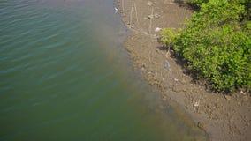 Rivière de Chapora, Goa Photo libre de droits