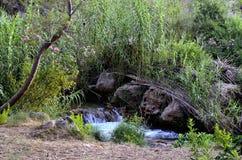 Rivière de Chelva de traînée de l'eau photo libre de droits