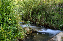 Rivière de Chelva de traînée de l'eau image stock