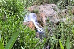 Rivière de Chelva de traînée de l'eau le playeta photographie stock