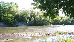 Rivière de Cheremosh banque de vidéos