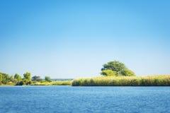 Rivière de Chobe images libres de droits