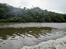 Rivière de croisement d'amazonas photographie stock libre de droits