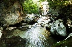 Rivière de détente Photo stock