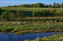 Rivière de Derzha pouvez Image libre de droits