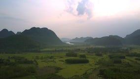 Rivière de enroulement calme parmi des gisements d'arachide et des forêts denses banque de vidéos