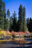 Rivière de fard à joues en automne Photo libre de droits
