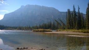 Rivière de forêt d'arbre de montagne de banff de vallée d'arc Photo libre de droits