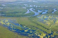 Rivière de forêt dans l'inondation, vue supérieure Photographie stock