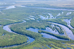 Rivière de forêt dans l'inondation, vue supérieure Images libres de droits