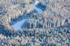 Rivière de forêt dans le jour d'hiver froid, vue supérieure images stock