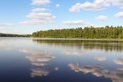 Rivière de forêt de côte Photo libre de droits