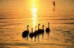 Rivière de Gpden dans le coucher du soleil Photos libres de droits