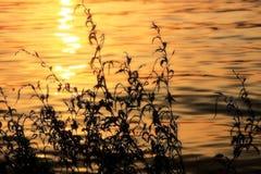 Rivière de Gpden dans le coucher du soleil Photographie stock libre de droits