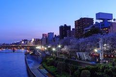 Rivière de gratte-ciel et de Sumida à Tokyo au crépuscule Image libre de droits
