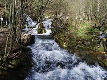 Rivière de Grza photos libres de droits