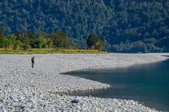 Rivière de Hasst à hurler Billy Falls Track, situé dans le parc national aspirant de Mt, le Nouvelle-Zélande photo stock