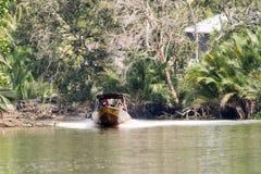 Rivière de jungle, Brunei image stock