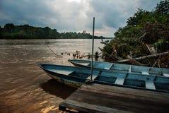 Rivière de Kinabatangan, Bornéo, Sabah Malaysia Paysage de soirée des arbres, de l'eau et des bateaux photographie stock