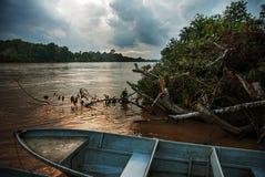 Rivière de Kinabatangan, Bornéo, Sabah Malaysia Paysage de soirée des arbres, de l'eau et des bateaux photographie stock libre de droits