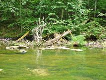 Rivière 24 de Krutynia photos stock