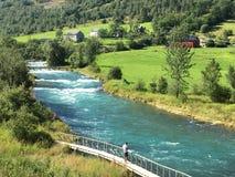 Rivière de la Norvège Photographie stock libre de droits
