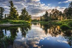Rivière de Liwiec en Pologne Photographie stock