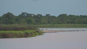 Rivière de méta et un bateau local de navigation, Colombie banque de vidéos